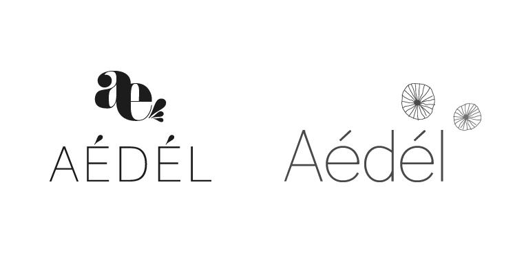 fiche_761x400_logo_aedel2