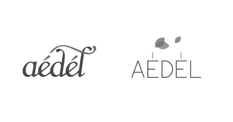 fiche_761x400_logo_aedel3